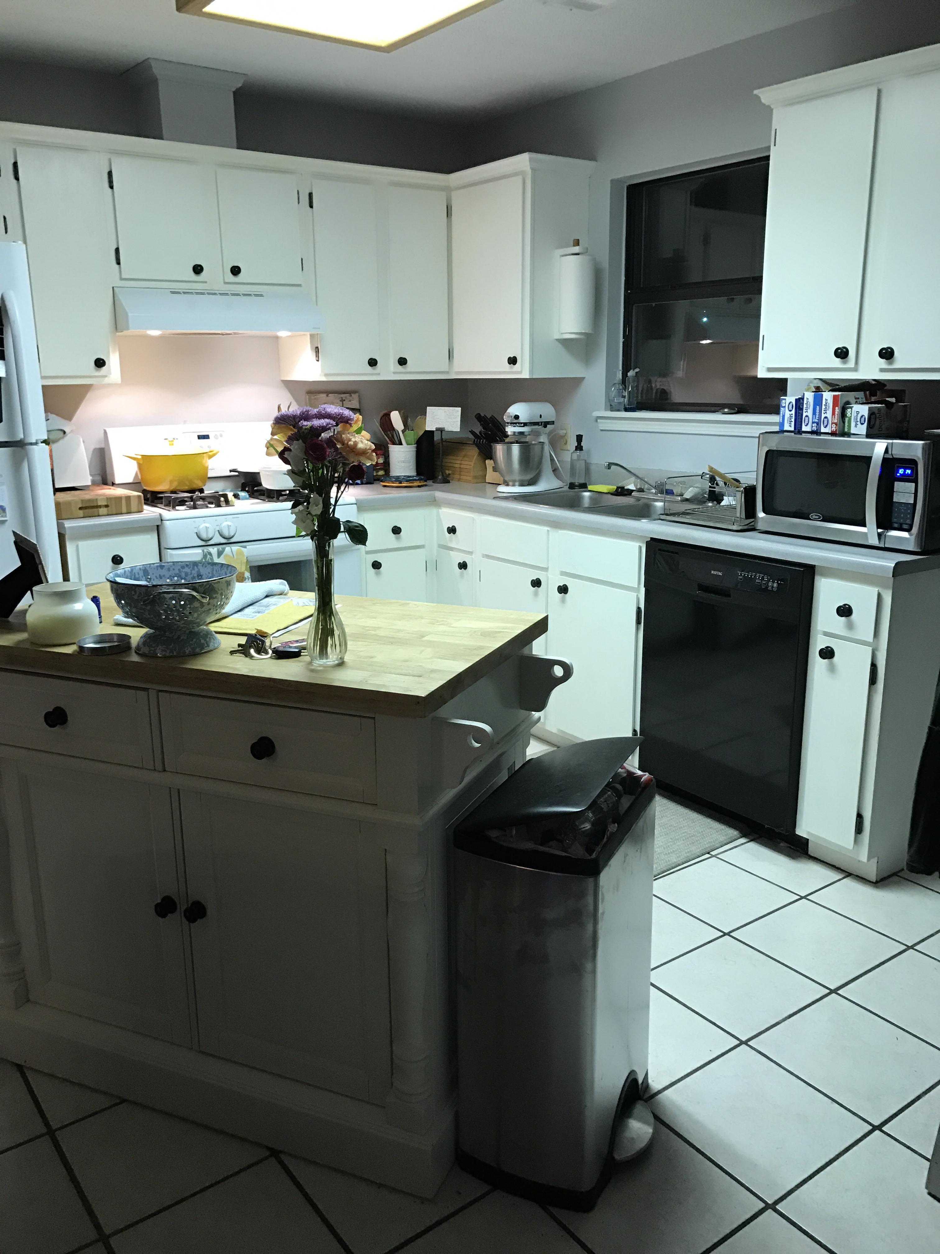 Kitchen Reno: Part 1-Cabinets